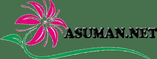 Asuman.net